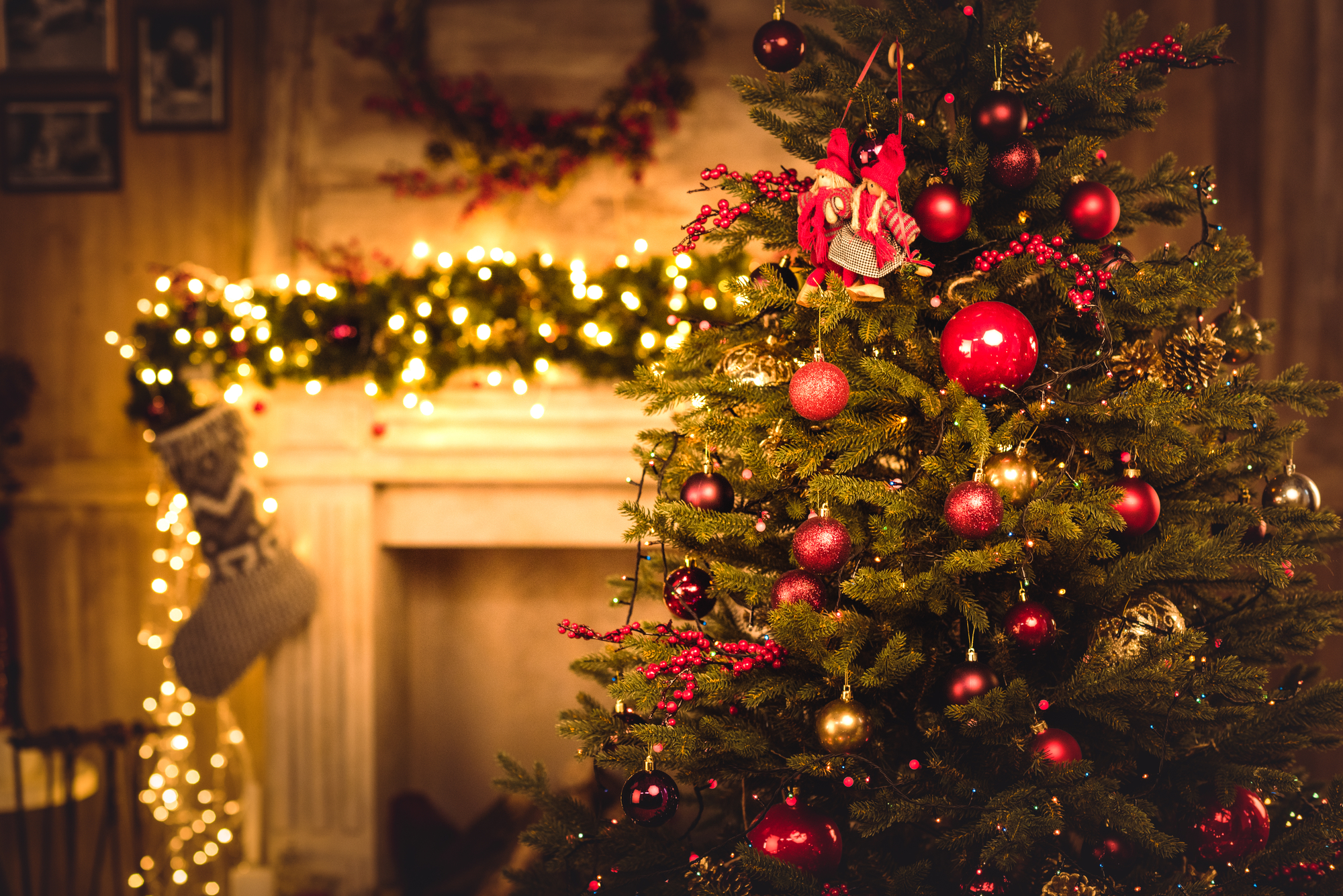 Christmas tree in your serviced apartments